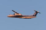 kuro2059さんが、新千歳空港で撮影したANAウイングス DHC-8-402Q Dash 8の航空フォト(写真)