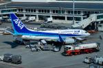 delawakaさんが、那覇空港で撮影した全日空 737-781の航空フォト(写真)