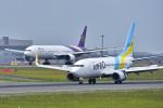 パンダさんが、新千歳空港で撮影したAIR DO 737-781の航空フォト(写真)