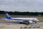 どんちんさんが、成田国際空港で撮影した全日空 787-8 Dreamlinerの航空フォト(写真)