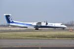 kumagorouさんが、仙台空港で撮影したANAウイングス DHC-8-402Q Dash 8の航空フォト(写真)