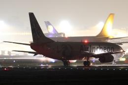 Hariboさんが、成田国際空港で撮影したエア・インチョン 737-4Y0/SFの航空フォト(飛行機 写真・画像)