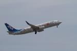 344さんが、岩国空港で撮影した全日空 737-881の航空フォト(写真)