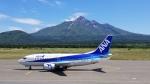 ゆ⇔たさんが、利尻空港で撮影したANAウイングス 737-54Kの航空フォト(写真)