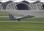 しんちゃん007さんが、嘉手納飛行場で撮影したアメリカ空軍 F-15C Eagleの航空フォト(写真)