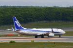 パンダさんが、新千歳空港で撮影した全日空 737-8ALの航空フォト(写真)