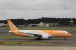 KAZFLYERさんが、成田国際空港で撮影したスクート 787-8 Dreamlinerの航空フォト(飛行機 写真・画像)