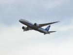 なまくら はげるさんが、羽田空港で撮影した全日空 787-8 Dreamlinerの航空フォト(写真)
