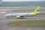 kumagorouさんが、新千歳空港で撮影したジンエアー 737-8Q8の航空フォト(写真)
