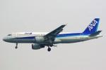 ちっとろむさんが、羽田空港で撮影した全日空 A320-211の航空フォト(写真)
