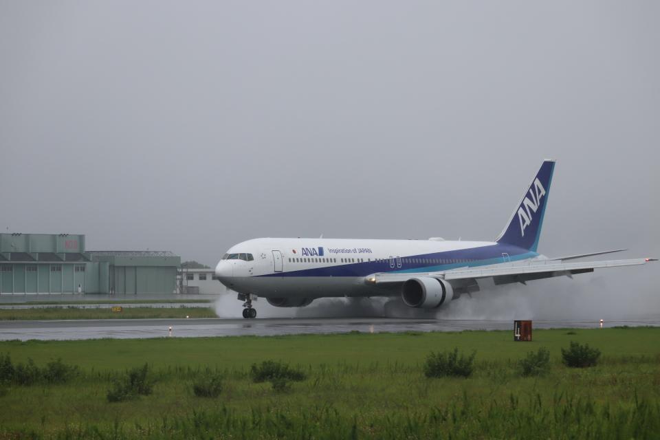 flyflygoさんの全日空 Boeing 767-300 (JA616A) 航空フォト