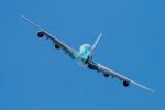 gomaさんが、ル・ブールジェ空港で撮影したハイ・フライ・マルタ A380-841の航空フォト(写真)