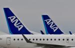 Dojalanaさんが、函館空港で撮影した全日空 A321-211の航空フォト(写真)