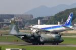 虎太郎19さんが、福岡空港で撮影した航空自衛隊 C-130H Herculesの航空フォト(写真)