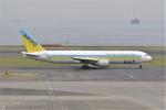 kumagorouさんが、羽田空港で撮影したAIR DO 767-33A/ERの航空フォト(写真)