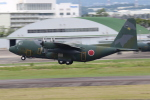 ANA744Foreverさんが、名古屋飛行場で撮影した航空自衛隊 C-130H Herculesの航空フォト(写真)