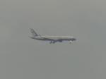 うすさんが、伊丹空港で撮影したアメリカ空軍 VC-32A (757-2G4)の航空フォト(写真)