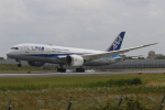 endress voyageさんが、伊丹空港で撮影した全日空 787-8 Dreamlinerの航空フォト(写真)