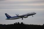 MA~RUさんが、成田国際空港で撮影した全日空 A320-271Nの航空フォト(写真)