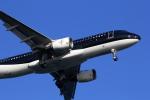 VFRさんが、羽田空港で撮影したスターフライヤー A320-214の航空フォト(写真)