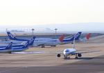 ふじいあきらさんが、羽田空港で撮影した全日空 A320-211の航空フォト(飛行機 写真・画像)