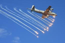 Hiro-hiroさんが、相模湾で撮影した海上自衛隊 P-3Cの航空フォト(飛行機 写真・画像)