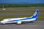 TulipTristar 777さんが、新千歳空港で撮影した全日空 737-881の航空フォト(写真)