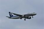 kumagorouさんが、那覇空港で撮影した全日空 A320-211の航空フォト(写真)