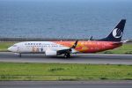 yabyanさんが、中部国際空港で撮影した山東航空 737-85Nの航空フォト(写真)
