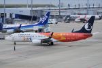 yabyanさんが、中部国際空港で撮影した山東航空 737-85Nの航空フォト(飛行機 写真・画像)