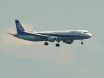 なまくら はげるさんが、羽田空港で撮影した全日空 A321-211の航空フォト(写真)