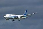 Mochi7D2さんが、成田国際空港で撮影した全日空 787-8 Dreamlinerの航空フォト(写真)