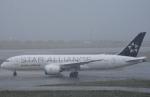 FLYING  HONU好きさんが、関西国際空港で撮影したエア・インディア 787-8 Dreamlinerの航空フォト(写真)