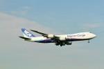 raiden0822さんが、成田国際空港で撮影した日本貨物航空 747-8KZF/SCDの航空フォト(写真)