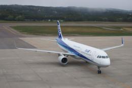 庄内空港 - Shonai Airport [SYO/RJSY]で撮影された全日空 - All Nippon Airways [NH/ANA]の航空機写真