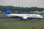 T.Sazenさんが、成田国際空港で撮影した厦門航空 787-8 Dreamlinerの航空フォト(飛行機 写真・画像)