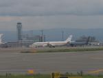 ガスパールさんが、関西国際空港で撮影したドイツ空軍 A340-313Xの航空フォト(写真)