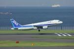 メンチカツさんが、羽田空港で撮影した全日空 A320-211の航空フォト(写真)