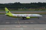 シュウさんが、成田国際空港で撮影したジンエアー 737-86Nの航空フォト(写真)