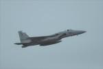 kumagorouさんが、那覇空港で撮影した航空自衛隊 F-15J Eagleの航空フォト(写真)