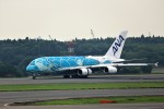 T.Sazenさんが、成田国際空港で撮影した全日空 A380-841の航空フォト(飛行機 写真・画像)
