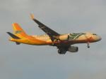 commet7575さんが、福岡空港で撮影したセブパシフィック航空 A320-214の航空フォト(写真)
