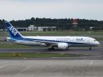FT51ANさんが、成田国際空港で撮影した全日空 787-8 Dreamlinerの航空フォト(写真)