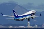 yabyanさんが、中部国際空港で撮影した全日空 737-781の航空フォト(飛行機 写真・画像)