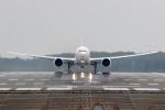 うみBOSEさんが、千歳基地で撮影した航空自衛隊 777-3SB/ERの航空フォト(写真)