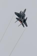うみBOSEさんが、千歳基地で撮影した航空自衛隊 F-15DJ Eagleの航空フォト(写真)