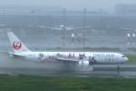 どらいすたーさんが、羽田空港で撮影した日本航空 767-346/ERの航空フォト(写真)