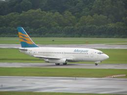 もんがーさんが、シンガポール・チャンギ国際空港で撮影したメルパチ・ヌサンタラ航空 737-217/Advの航空フォト(飛行機 写真・画像)