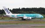 ハム太郎。さんが、成田国際空港で撮影した全日空 A380-841の航空フォト(写真)