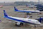 いっくんさんが、中部国際空港で撮影した全日空 A321-272Nの航空フォト(飛行機 写真・画像)